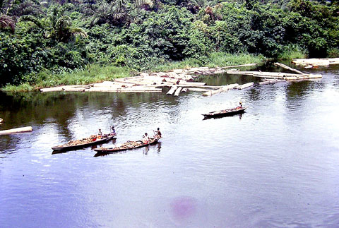 Fishermen in the Niger Delta