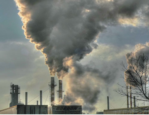 Environmental pollution in the Niger Delta