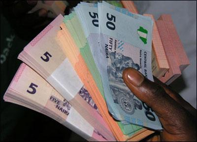 Polymer naira notes