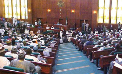 *House of Representatives members in session