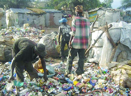 Vestiges of poverty, feeding from the waste dump