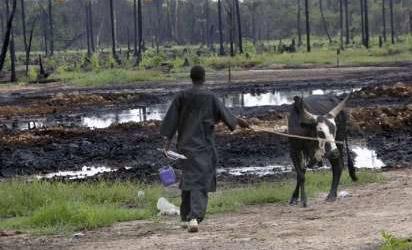 Ravaged Ogoniland