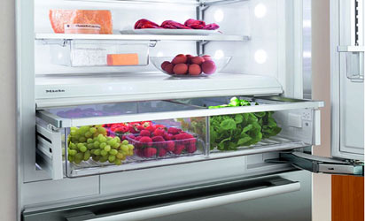 *Proper storage of food in the refrigerator preserves growth of food-borne micro-organisms, but quality gradually decreases over time.