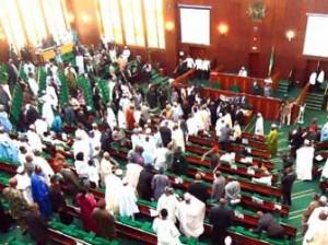 House of Representatives during plenary