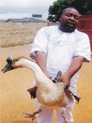 Prince Arinze Onebunne, Geese farmer