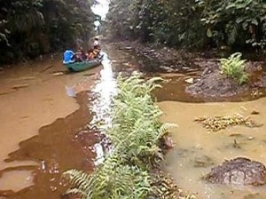 *Oil-impacted Ikeinghenbiri creek