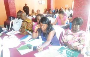•Participants at the presentation of Anambra State health SDI surveys