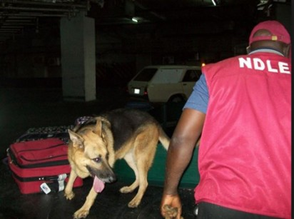 NDLEA seeks association's collaboration in fighting drug abuse