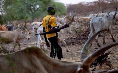Delta CP to Miyetti-Allah: Unite to fish out criminal herdsmen