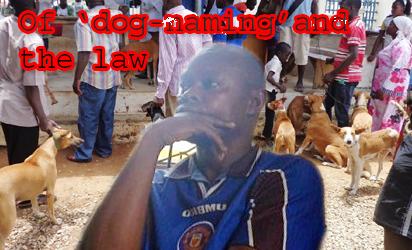 Court frees man that named dog Buhari