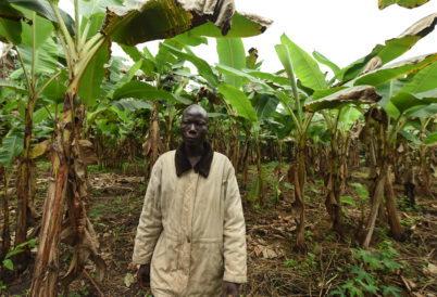Expert calls for documentation of farmers