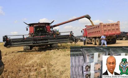 Rice Mill CBN loan