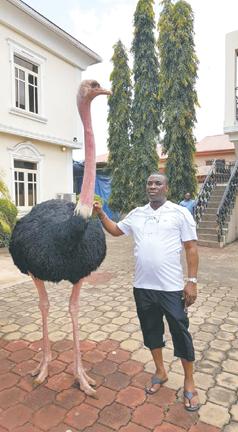 Wasiu Ayinde at his Ijebu Ode home