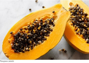 Nutritionist lists benefits of papaya leaf juice; says it cures menstrual pain