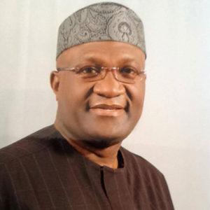 I'll avoid partisan politics – Ohanaeze president