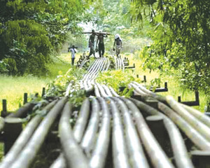 Fresh push for crude oil exploratory work in Benue trough