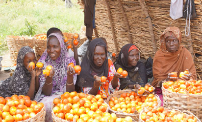 6 benefiting states urge IFAD to expand operational scope to LGAs