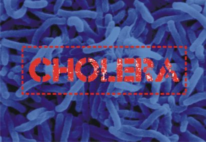 Largest cholera vaccine drive to help 2 mln people in Africa