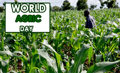 World Agric Day: Institute seeks review of curricula in agric varsities