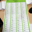 The fuss about INEC's Election Guidelines