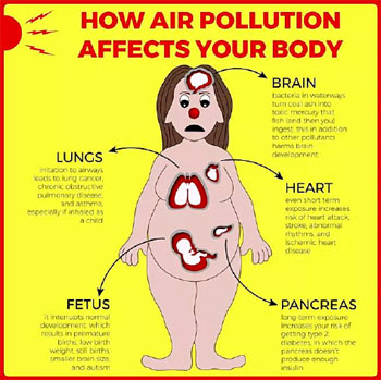 How air pollution affects your body