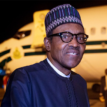 We'll make tourism veritable income earner for Nigeria – Buhari