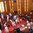 NASS leadership directs Police, SSS to secure complex for tomorrow's plenary