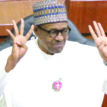 Buhari will not rig Presidential election – BMO