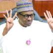 Buhari has no time for letter writing – Fashola