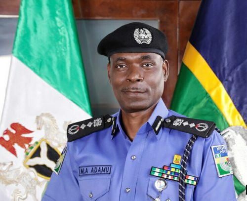 Nigeria Police officers excel in international duties but... — NHRC