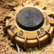Landmine kills eight in Borno