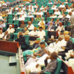 Just in: House of Reps approve Army's Operation Positive Identification