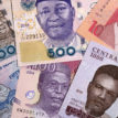 LOOMING FREE FALL: How to save the Naira ? Experts