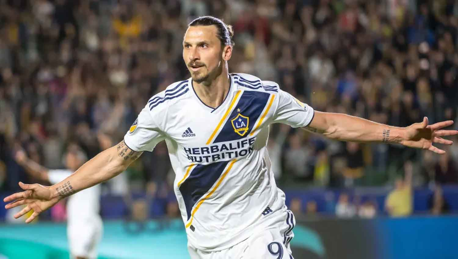 Ibrahimovic, MLS