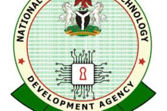 Diversification: NITDA empowers 100 women on application of ICT tools