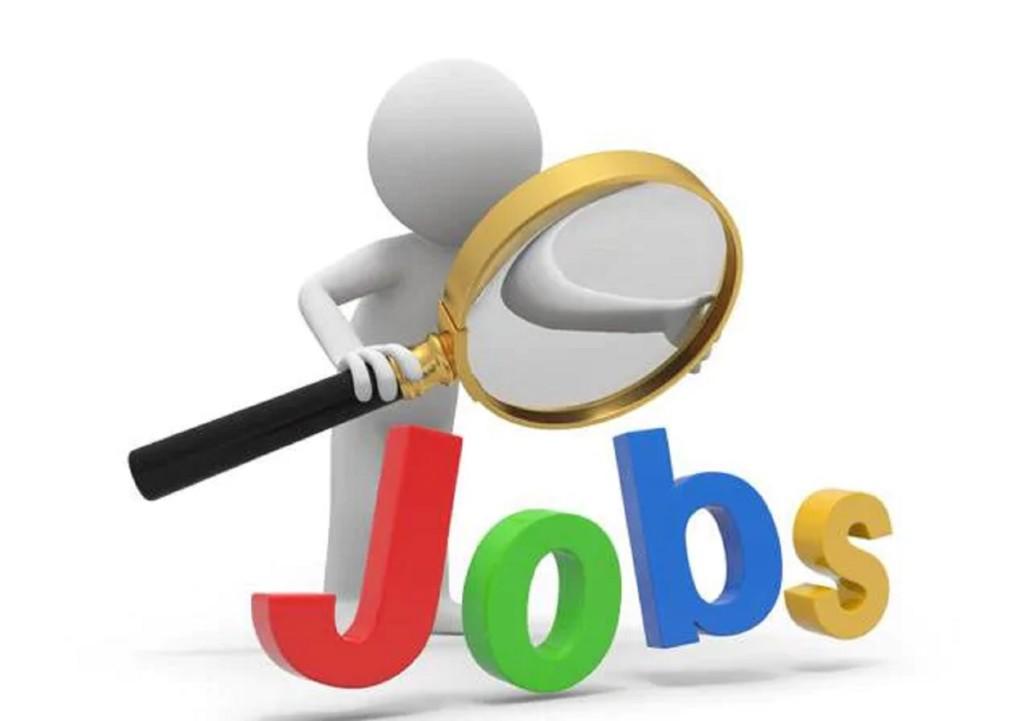 FG restates commitment to job creation