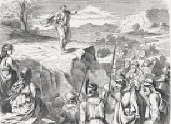 King of Shechem