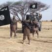 ISWAP fighters ambush convoy, kill 7 soldiers, 1 militiaman in Borno