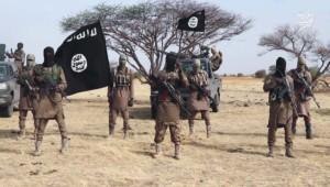 Five jihadists, two soldiers killed in Cameroon clash