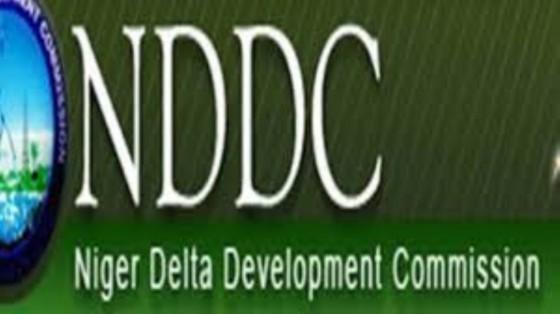 Ijaw group endorses forensic audit of NDDC