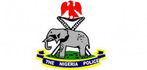 Police to enforce COVID-19 lockdown in Adamawa - Vanguard