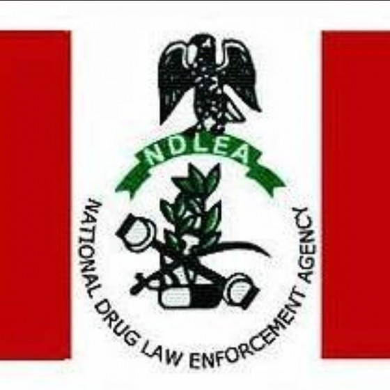 NDLEA arrests 110 suspected drug traffickers at Lagos airport