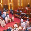 Social Calamity Looms in Nigeria if Unemployment is not addressed, Senate Warns