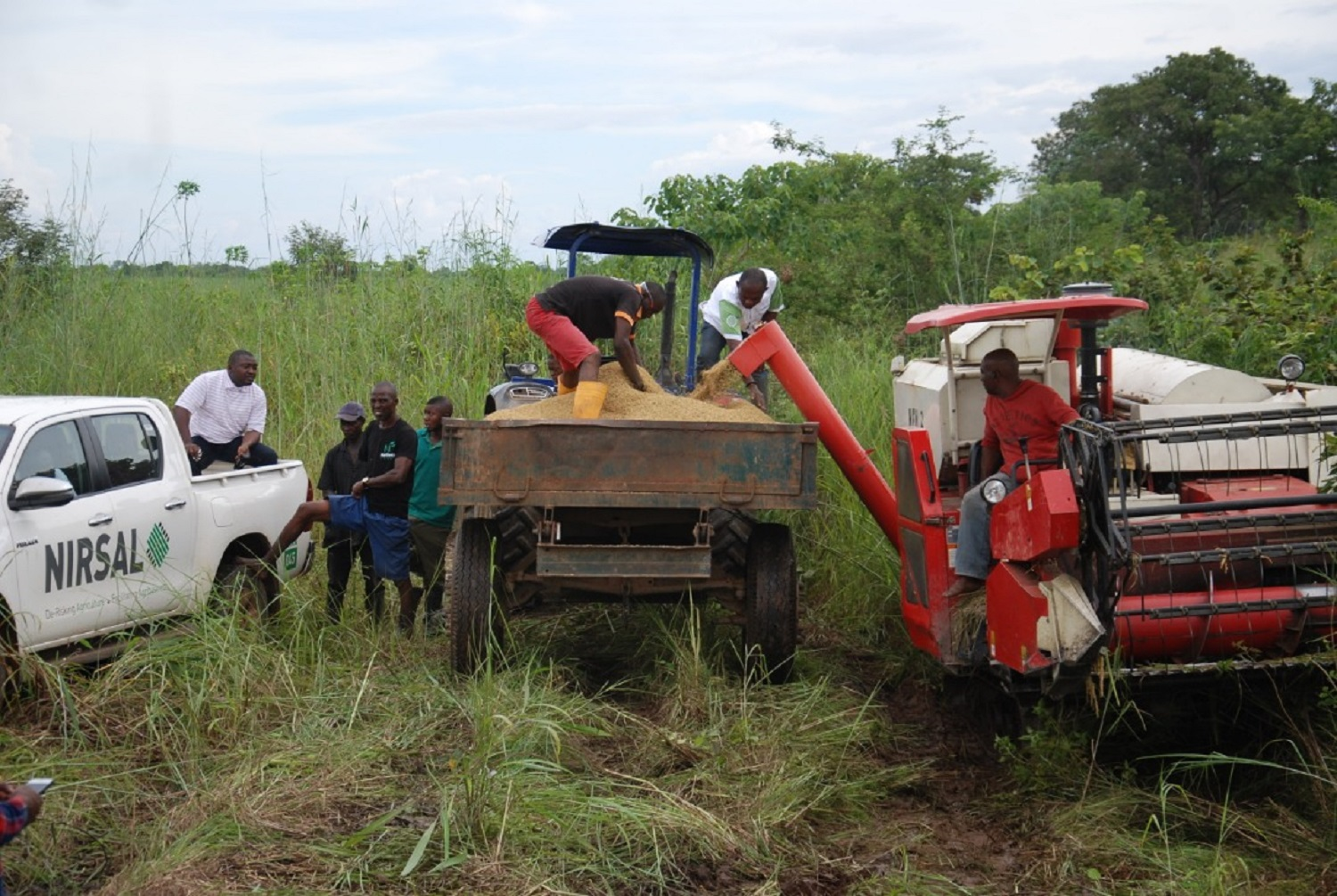Edo farmers cry out to Buhari, Lawan, Gbajabiamila over alleged misuse of N75bn agric loans