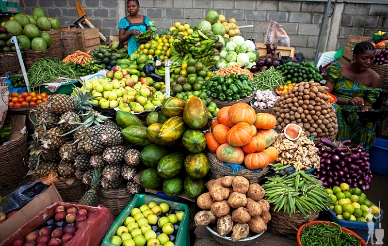 FG, Benue State to collaborate on massive food production