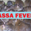 Lassa fever and other plagues: When we eat our way to death