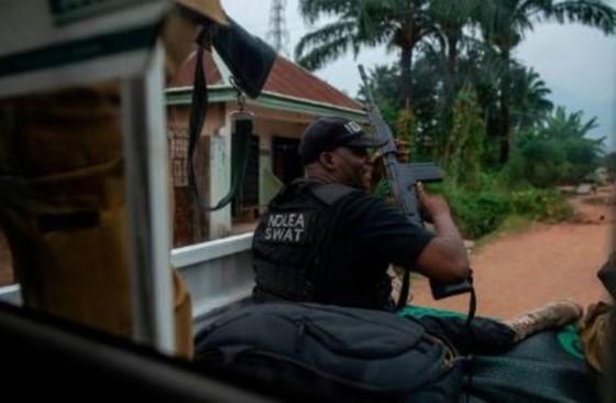 NDLEA destroys 34,560kg of drugs, substances in Ogun