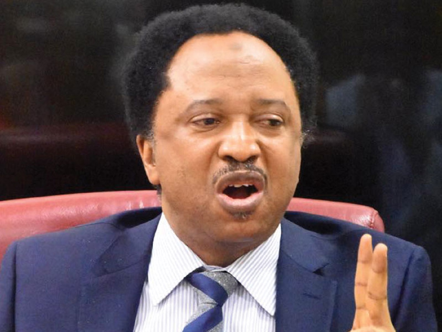 Don't be used by executive to emasculate freedom of expression, Sani to Senators