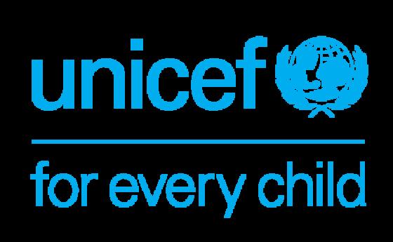 UNICEF enrolls 194, 883 out-of-school children in Adamawa