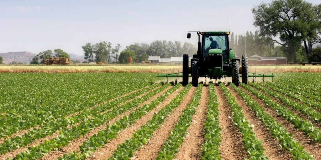 FG expresses confidence in Bayelsa's agricultural potential to diversify economy